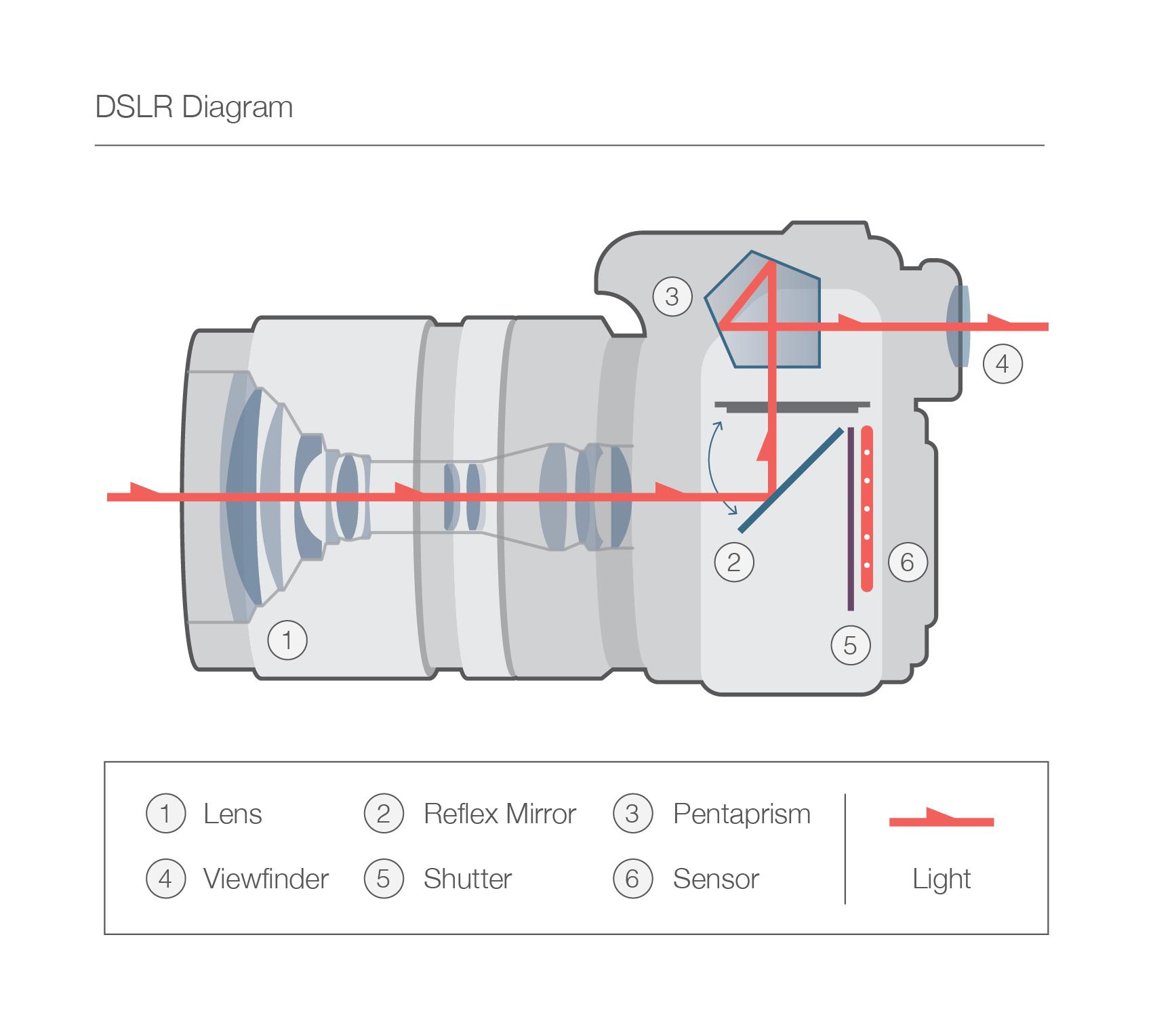Fotoğraf Makinesi Çalışma Prensibi Nasıldır?